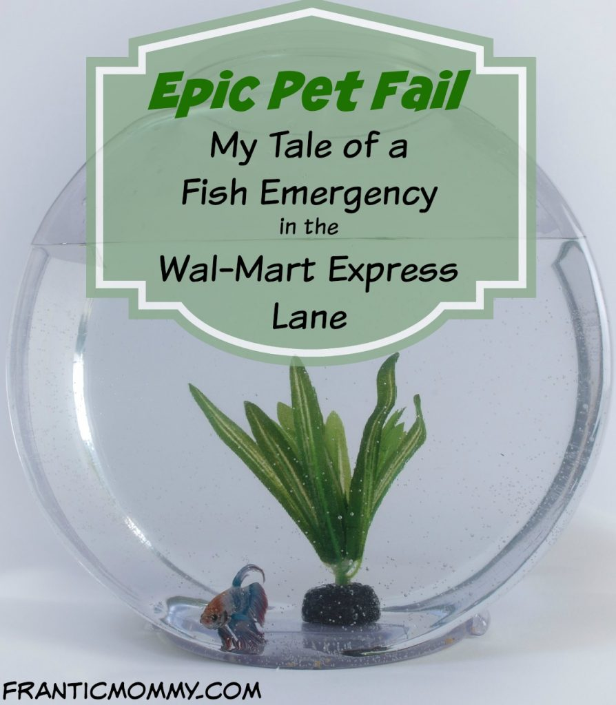 Epic pet fail my tale of a fish emergency in the wal mart express epic pet fail fish emergency in the wal mart express lane mightylinksfo
