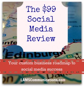 The $99 Social Media Review