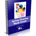 An Introduction to Spring Cleaning