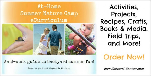 At Home Summer Nature Camp