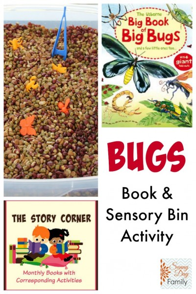 Bug Book Activity