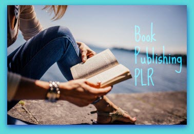book publishing PLR