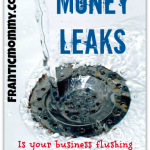 Money Leaks: Is your home business income trickling away?