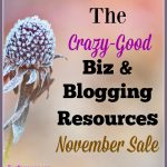 My Crazy-Good November Blogger Resource Sale is ON