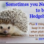Sometimes You Need to be a Hedgehog-The Hedgehog Concept