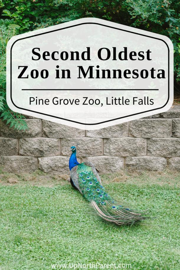 Pine Grove Zoo