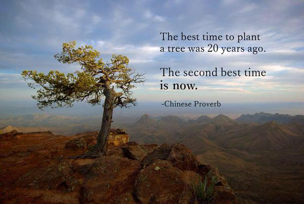 The best time to plant a tree was 20 years ago -- the second best time is today.