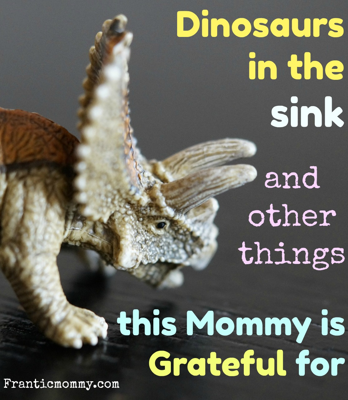 Dinosaurs in the Sink and other Things this Mommy is Grateful for