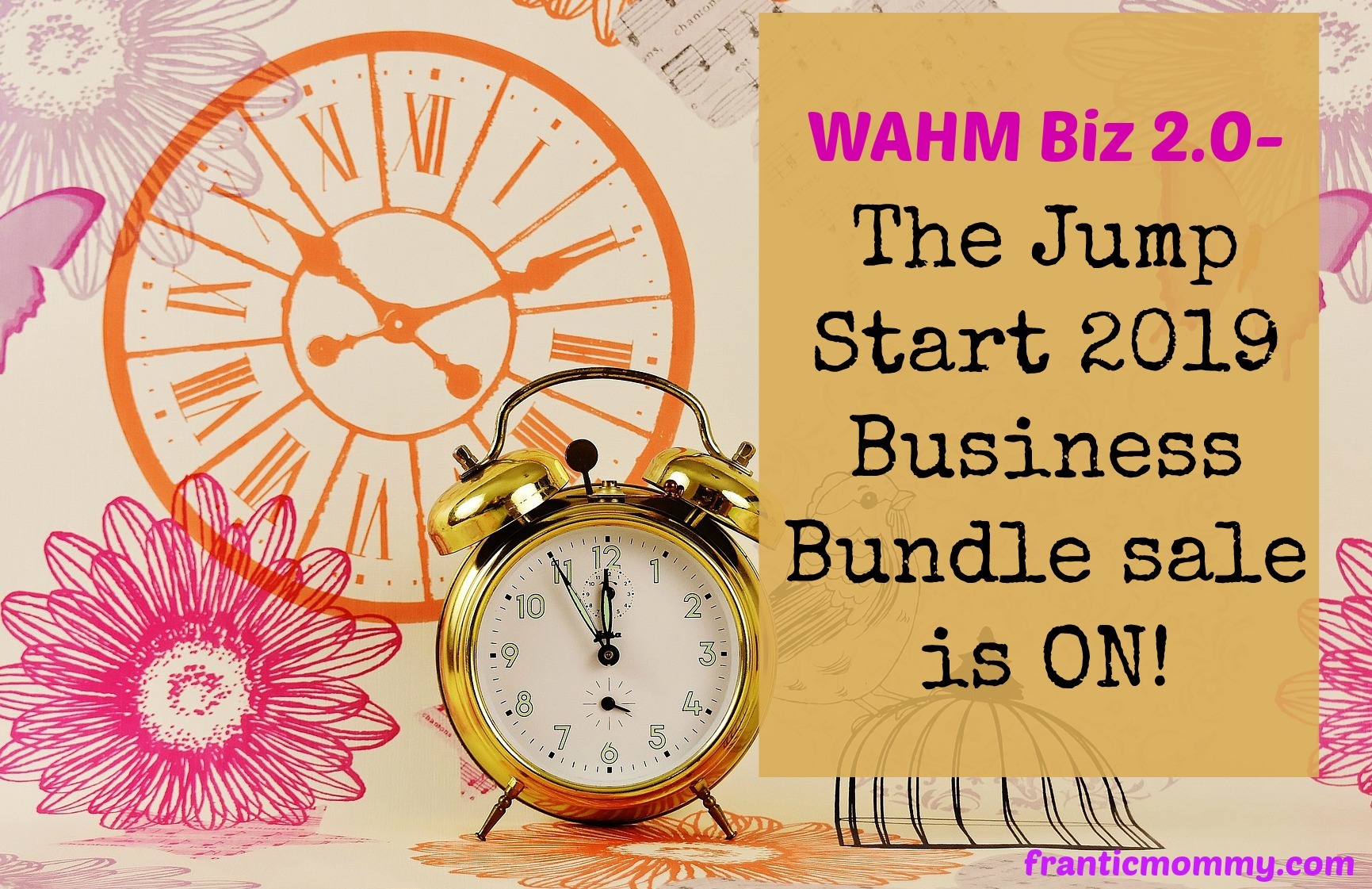 Lady Boss Recommends- The Jump Start 2019 Biz Bundle
