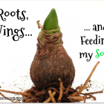 Roots, Wings and Feeding my Soul