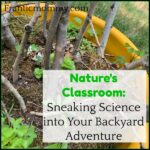 Nature's Classroom: Sneaking Science into Your Backyard Adventure